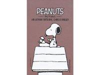 イタリア語で漫画、ピーナッツを読む  Hai un'aria familiare, Charlie Brown!: 24【B1】