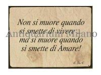 イタリア語パネル 生きるのをやめた時に死ぬのではない… Non si moure quando si smette di vivere... 【カラー・イエロー】