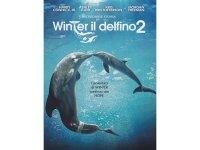 イタリア語などで観るハリー・コニック・Jr.の「イルカと少年2」 DVD  【B1】【B2】