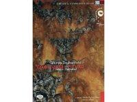 イタリア語で観る、塚本晋也の「ヒルコ/妖怪ハンター」 DVD 【B1】【B2】