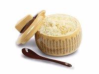 イタリア 陶製 粉チーズ入れ FORMAGGIO PARMIGIANO REGGIANO【カラー・イエロー】