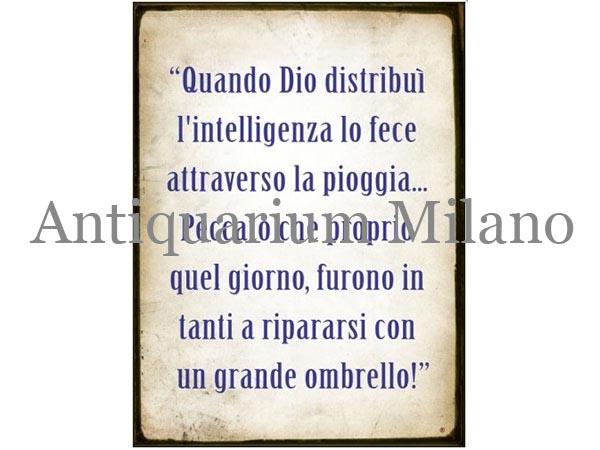 画像1: イタリア語パネル 神が智慧をふりまいたその時… Quando Dio distribui'... 【カラー・ブルー】
