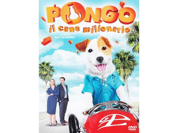 画像1: イタリア語などで観るスペインアニメ「Pongo il cane milionario」 DVD【B1】【B2】【C1】