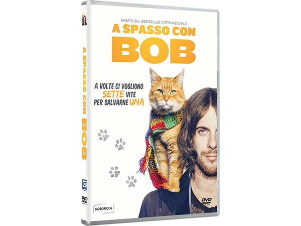 画像1: イタリア語などで観るロジャー・スポティスウッドの「ボブという名のストリート・キャット」 DVD  【B1】【B2】