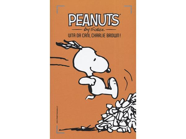 画像1: イタリア語で漫画、ピーナッツを読む Vita da cani, Charlie Brown!: 29【B1】