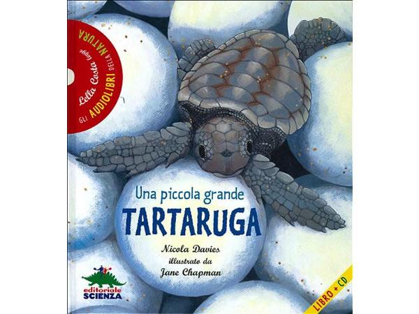 画像1: CD 本とCD両方楽しめるオーディオブック Una piccola grande tartaruga. Con CD Audio 【A1】【A2】【B1】【B2】