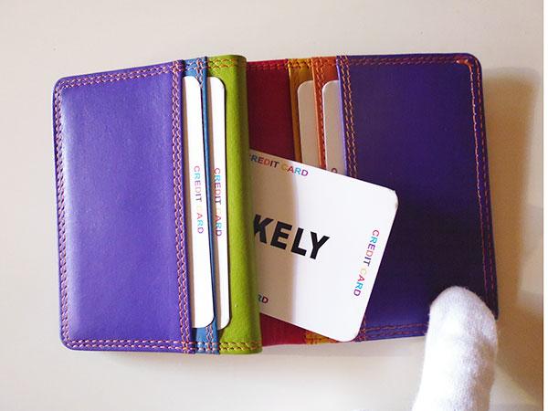 画像1: 沢山入る革のカラフル・カードケース 【カラー・レッド】【カラー・マルチ】